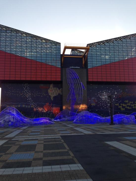 Osaka_Aquarium