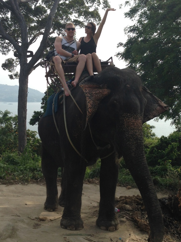 Elephants_Thailand